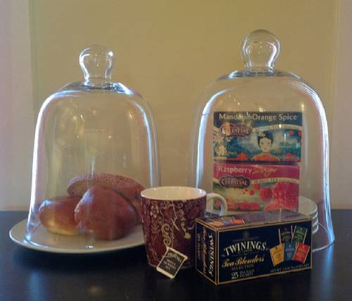 Selection of Bell Jars & Cloches