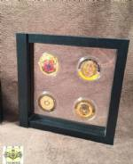 Challenge Coin Case - Four Coin Display